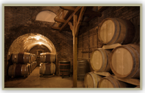 tequila cellar